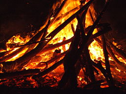 Guy_Fawkes_bonfire_2007.jpg